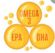 Hàm lượng DHA, EPA cao nhất